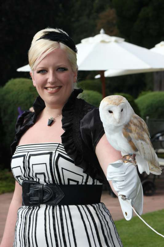 owl ring bearer and wedding guest