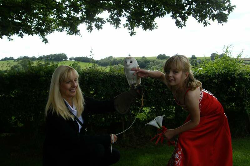 bromsgrove-wedding-owl-ring-bearer