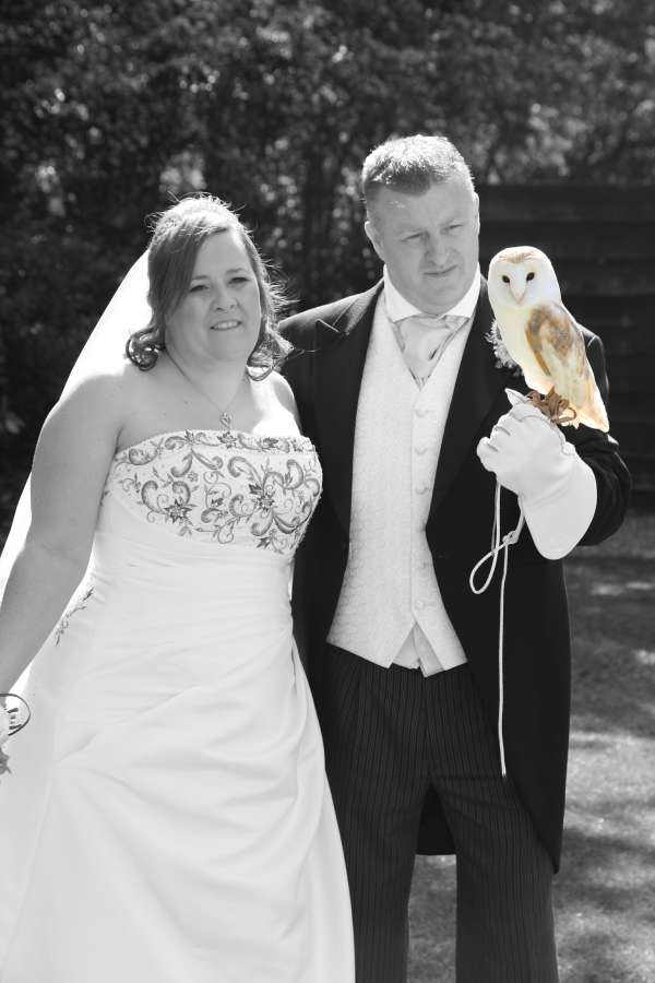owl ring bearer wedding birmingham
