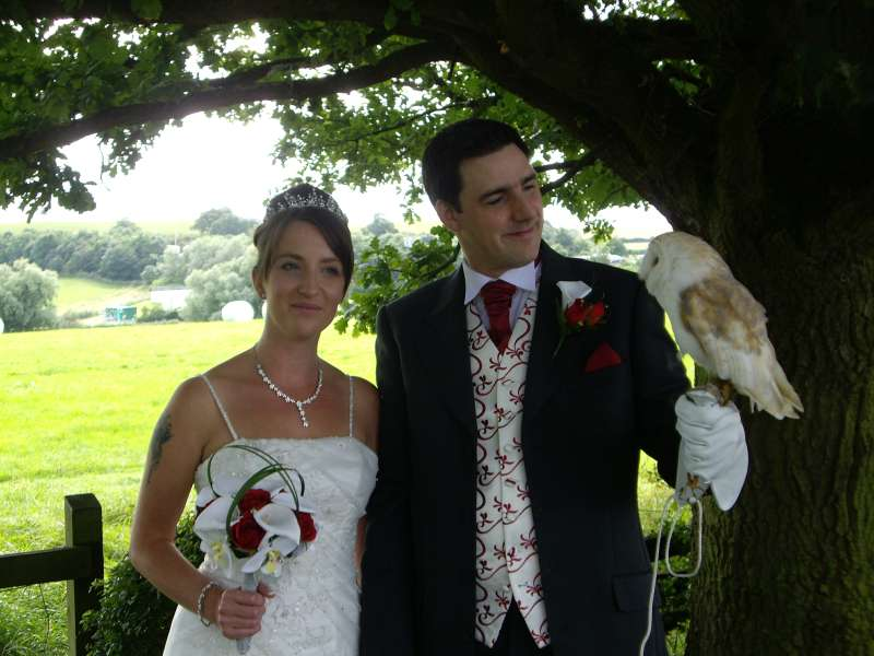 owl ring bearer on wedding day